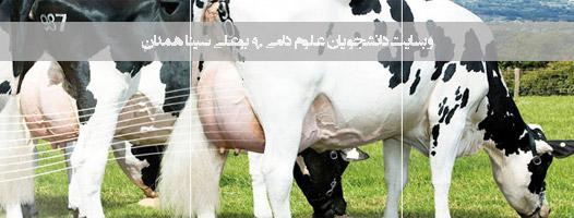 www.basu-dami.blogfa.com